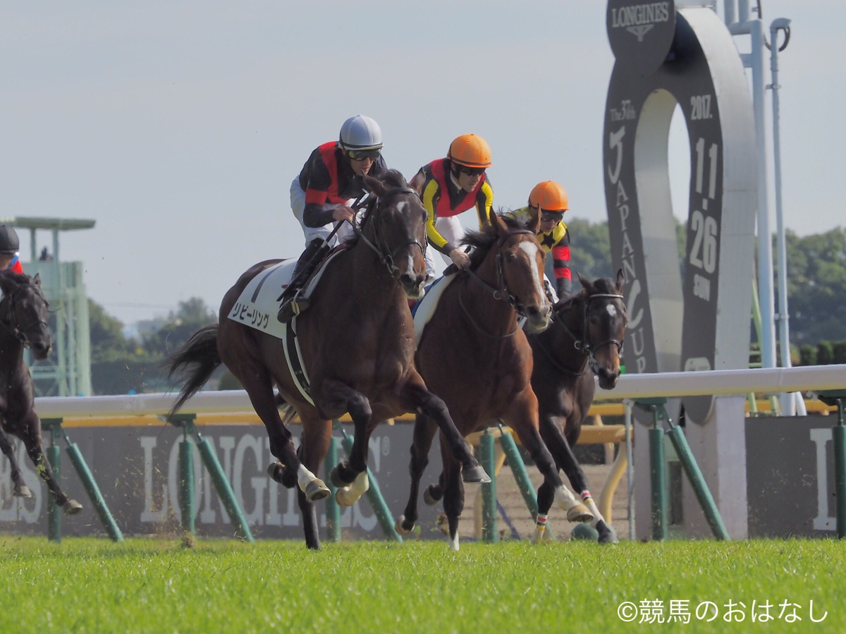 【京都5R/2歳新馬戦】ディープ産駒、トライン逃げ切りV!