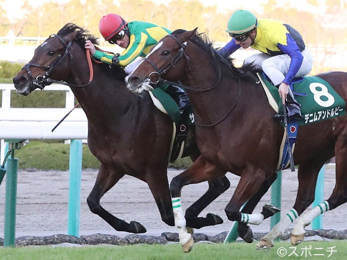 【中山11R/ステイヤーズS】アルバートがムーアと共に三連覇達成!