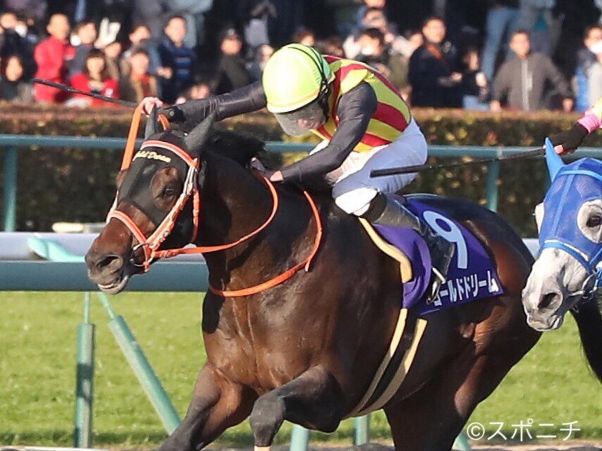 西内荘・装蹄担当馬「今週の主な勝ち馬」