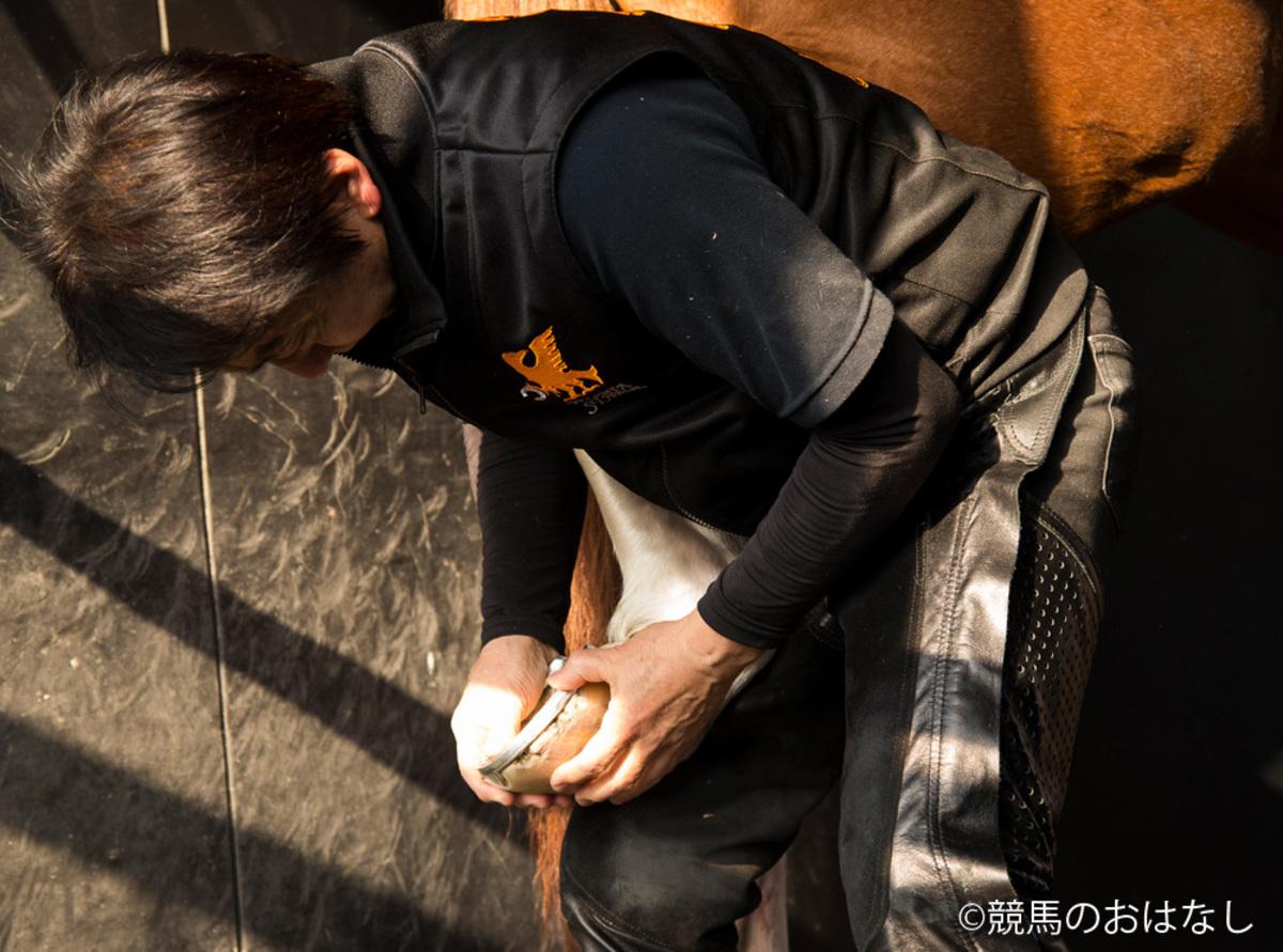 装蹄師/西内荘「この馬いい馬だ!Web版」今回は土曜阪神11Rの…