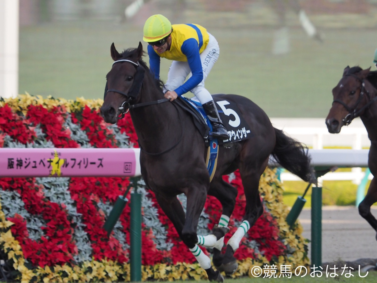 【中京10R/こうやまき賞】カフジバンガードが早め抜け出しから粘りこむ