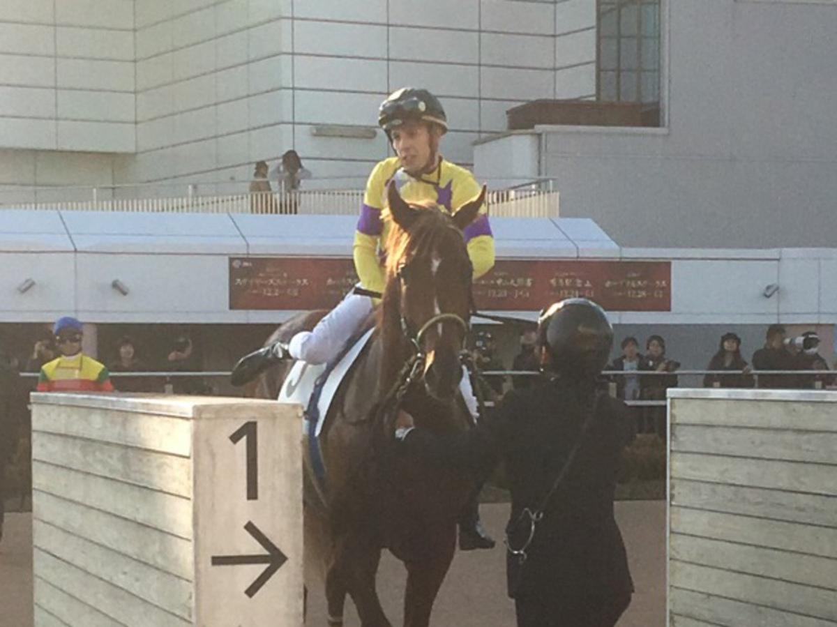 土曜中山5R・2歳新馬はカンパニー産駒のイエッツトがデビュー勝ち