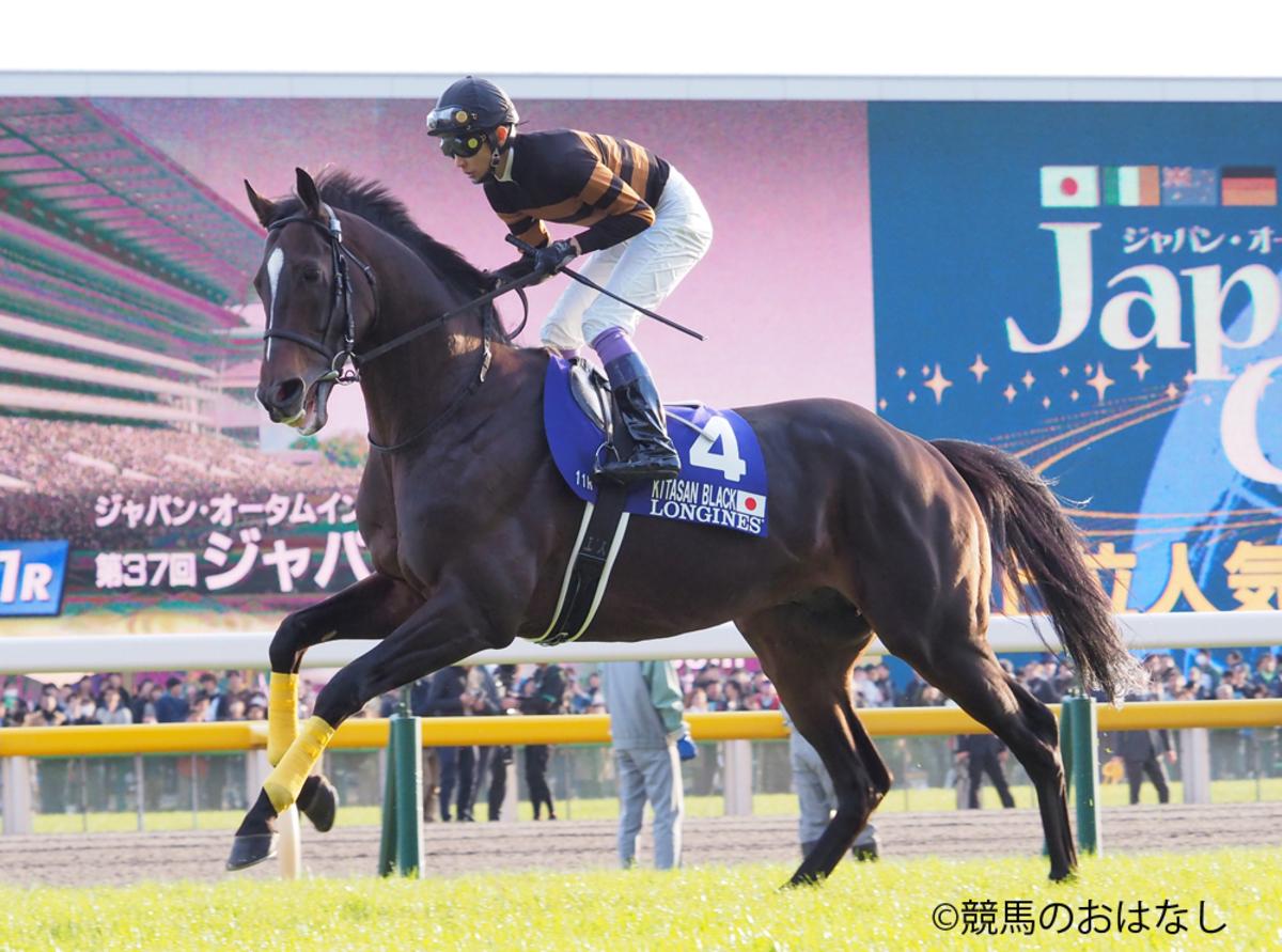 三浦皇成、樫木裕実のジムで有馬記念前のトレーニング