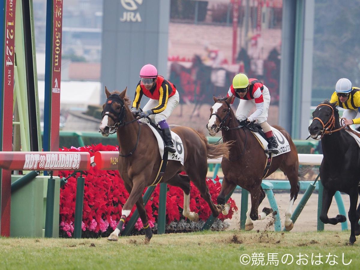 【阪神6R/2歳新馬戦】アルアインの全弟、ダノンマジェスティが人気に応える