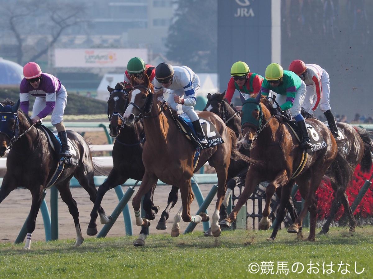 【中山8R/クリスマスローズS】タイセイプライドがオープン初勝利