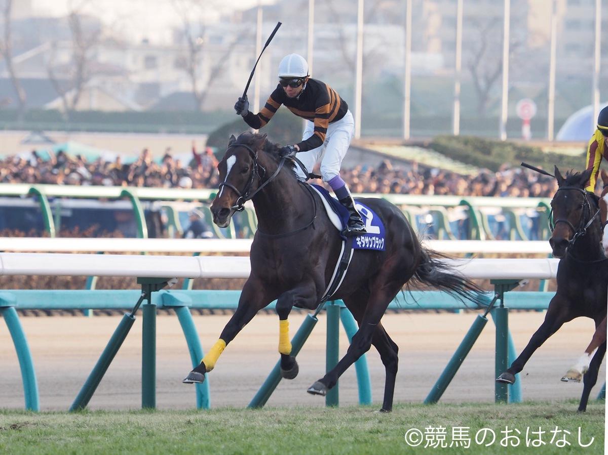 【阪神9R/千両賞】サンラモンバレー、後方一気の末脚で2連勝!