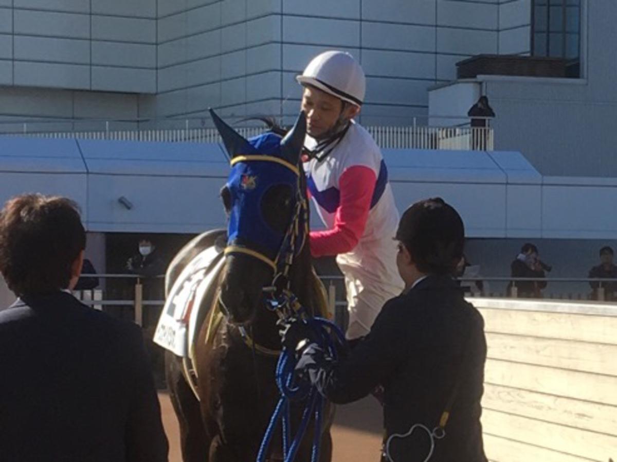 【中山4R/3歳新馬】トウカイパシオンが5馬身差楽勝でデビューV!
