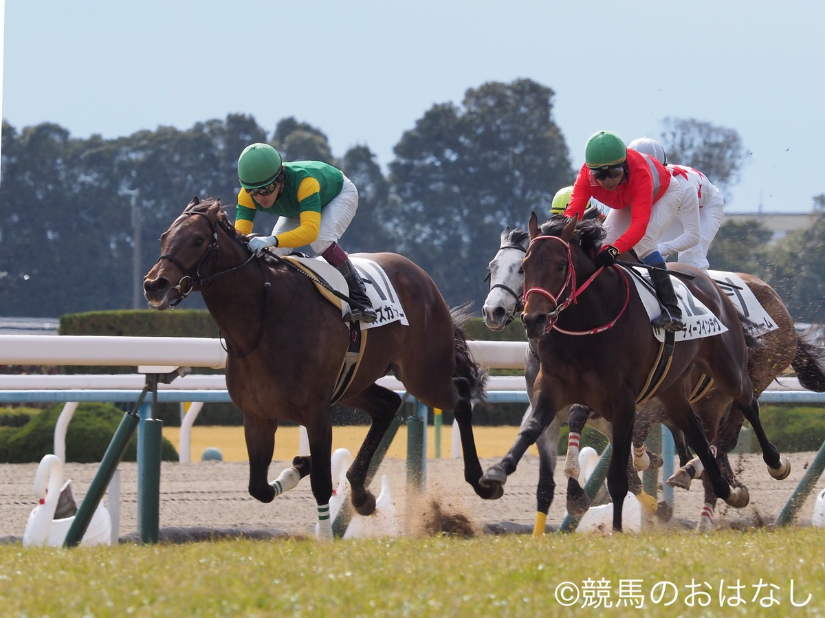 【東京6R/3歳新馬】3連単100万越えで大荒れ!9番人気のノーブルカリスがデビュー勝ち