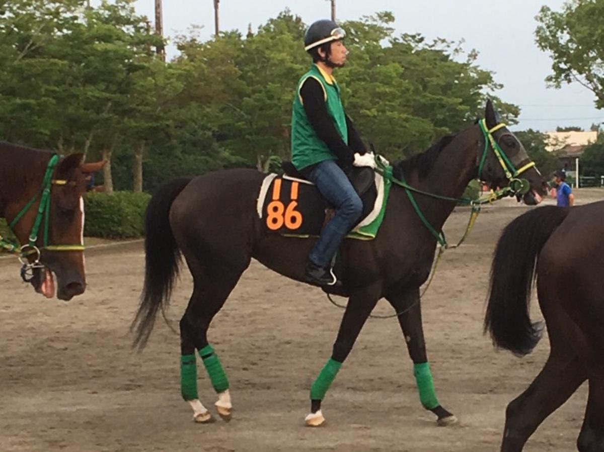【福島6R/2歳新馬】エスポワールシチー産駒 ジョウランが楽々逃げ切り