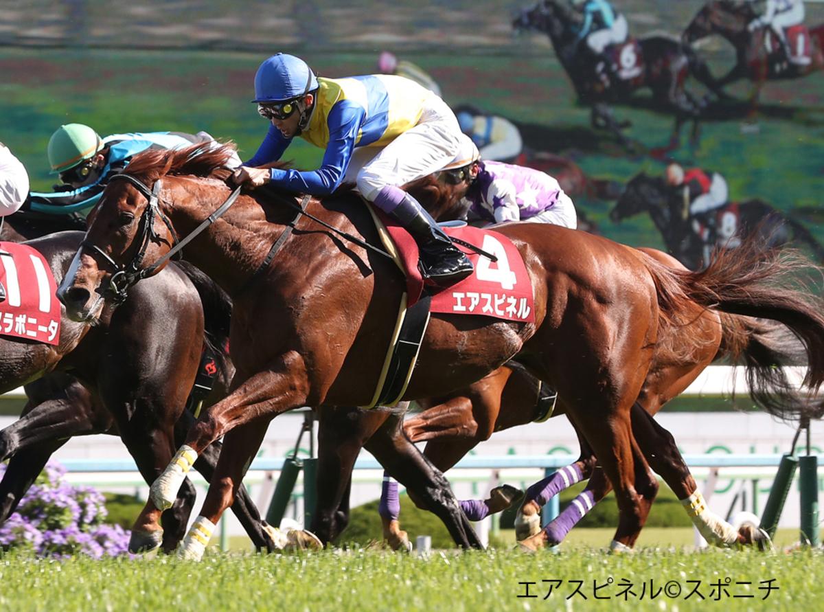【NST賞】登録馬と見どころ マイネルバールマンなど17頭