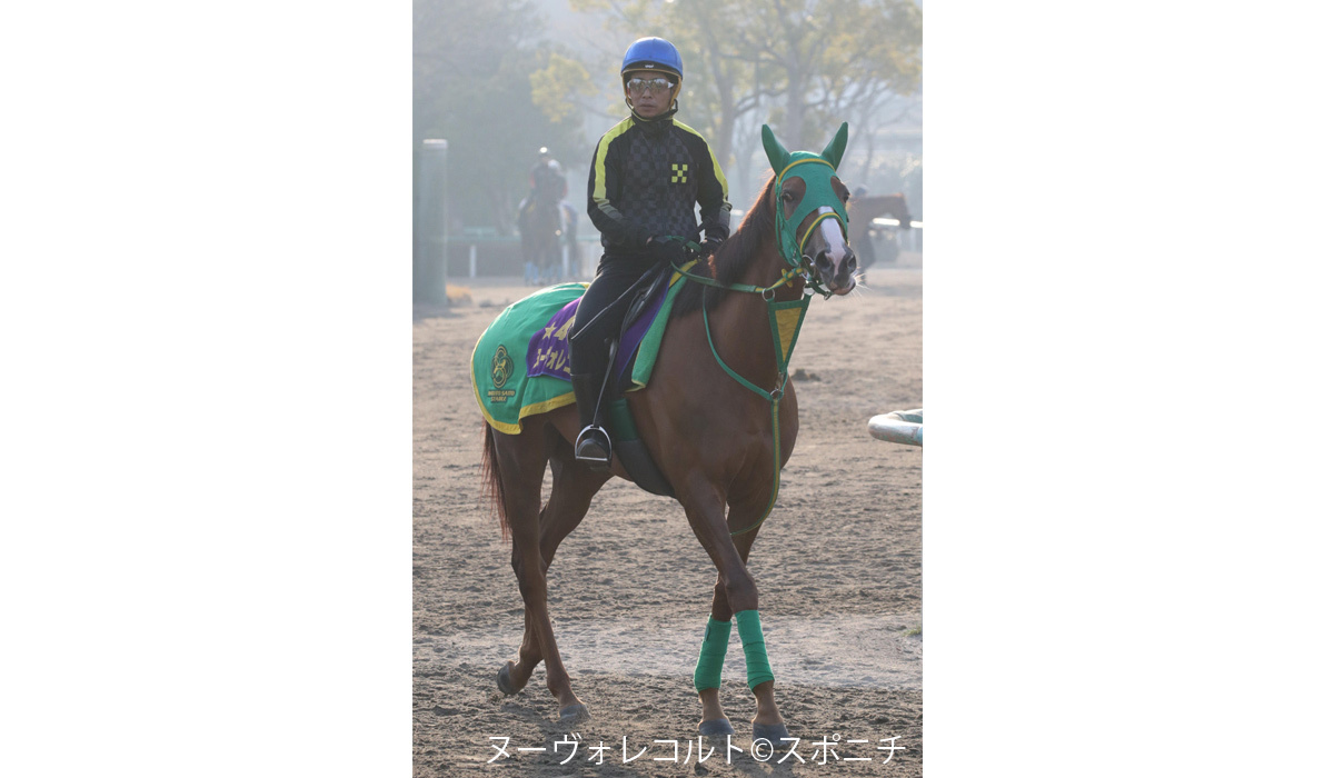 金鯱賞登録馬、ヒストリカル・リアファルなど18頭