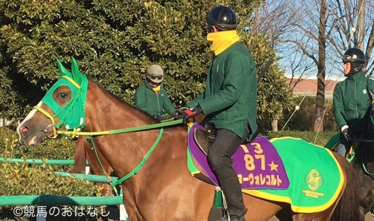 【14】西内荘のこの馬いい馬だ