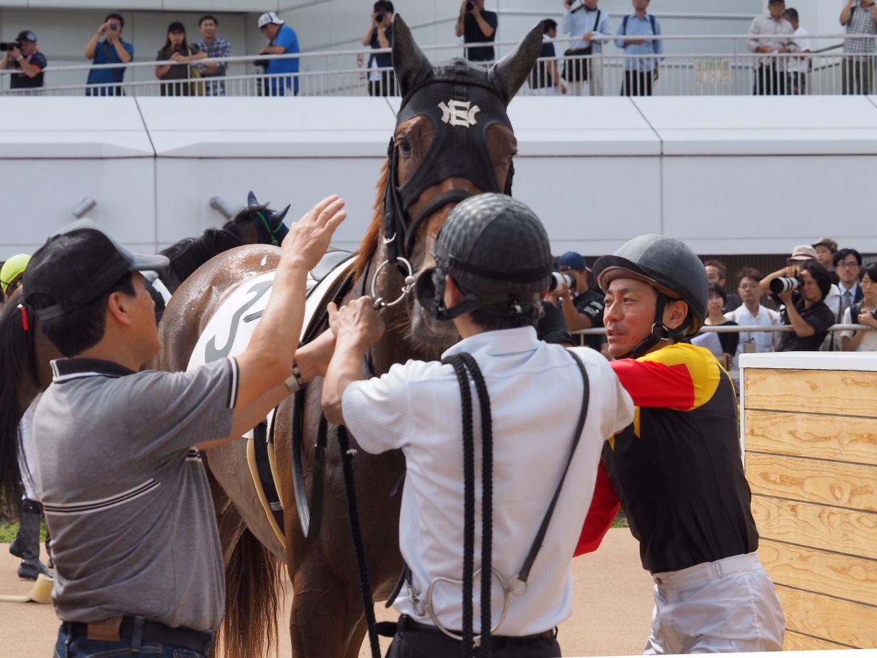 日曜中山4R新馬はアポロビビが快勝!勝浦「もっと良くなってくる」