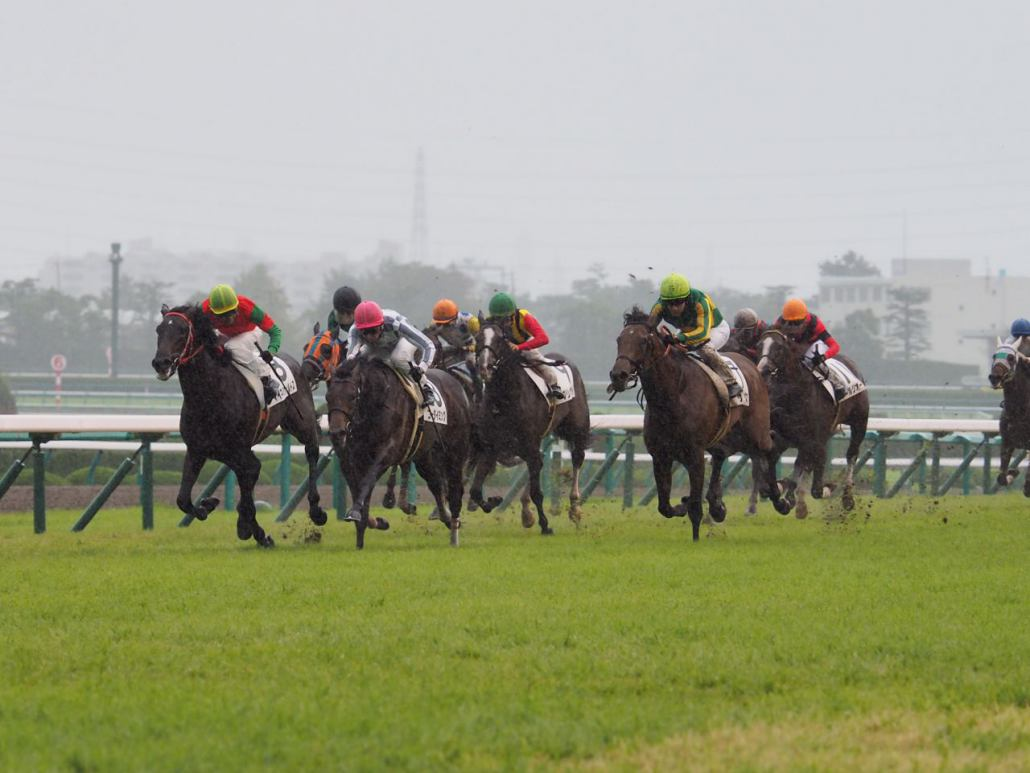 【阪神2歳新馬】武豊「1番乗りやすい」ゴータイミングが差し切り勝ち
