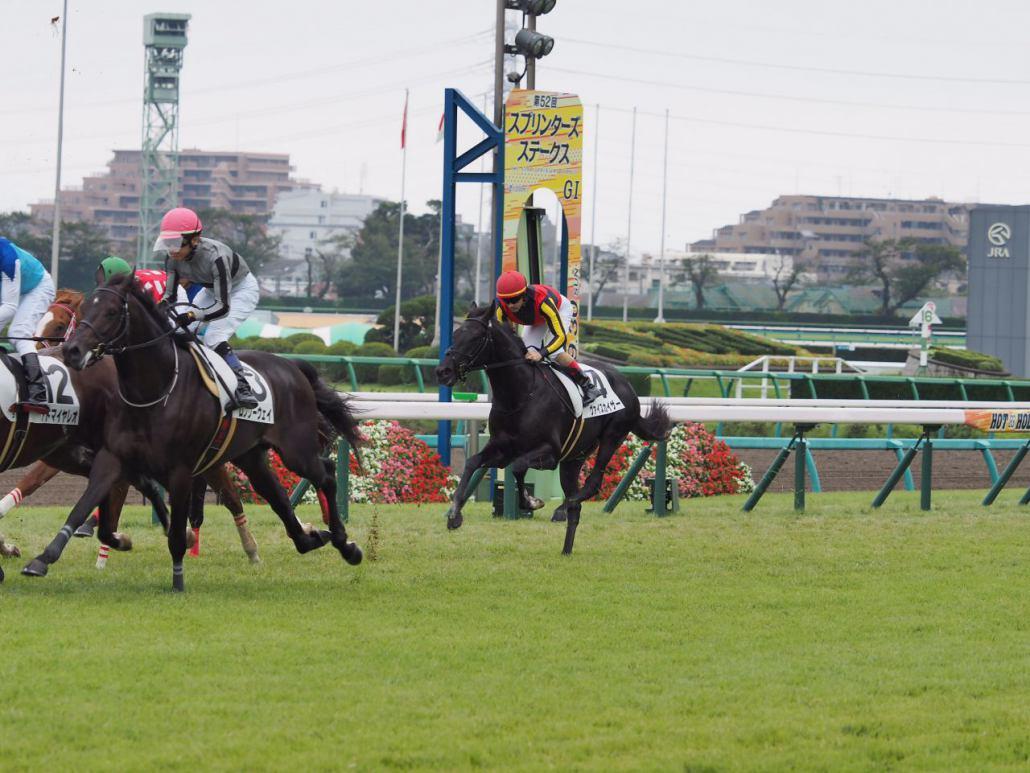 【中山5R/2歳新馬】エアジーンがデビューV!ヴァイスカイザーは出遅れが響き4着
