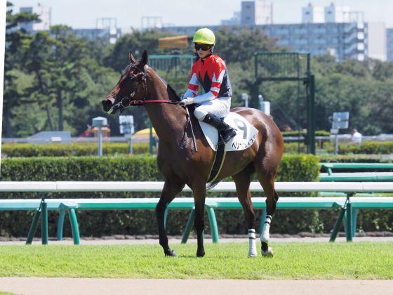 9月9日:中山2歳新馬戦