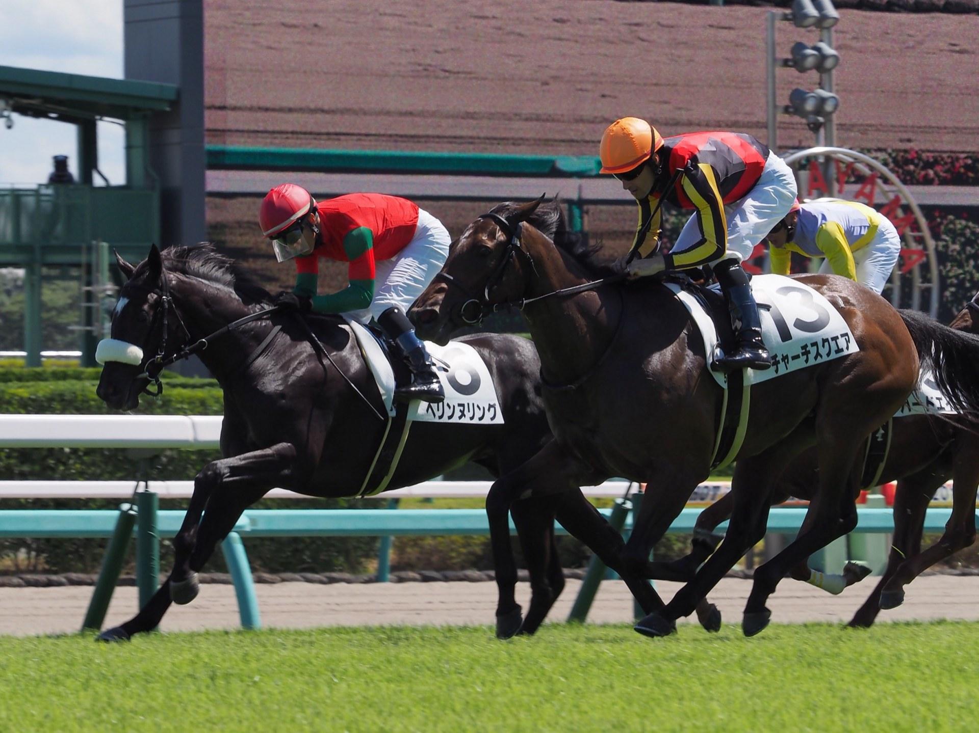 【中山5R/2歳新馬】アイルハヴアナザー産駒 ヘリンヌリングがデビュー勝ち