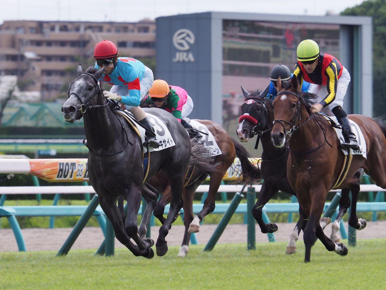 【中山5R/2歳新馬】ブラックタイド産駒 ウレキサイトがデビュー勝ち