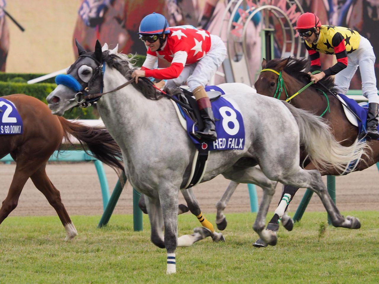 【スプリンターズS】登録馬と見どころ レッドファルクス ファインニードルなど