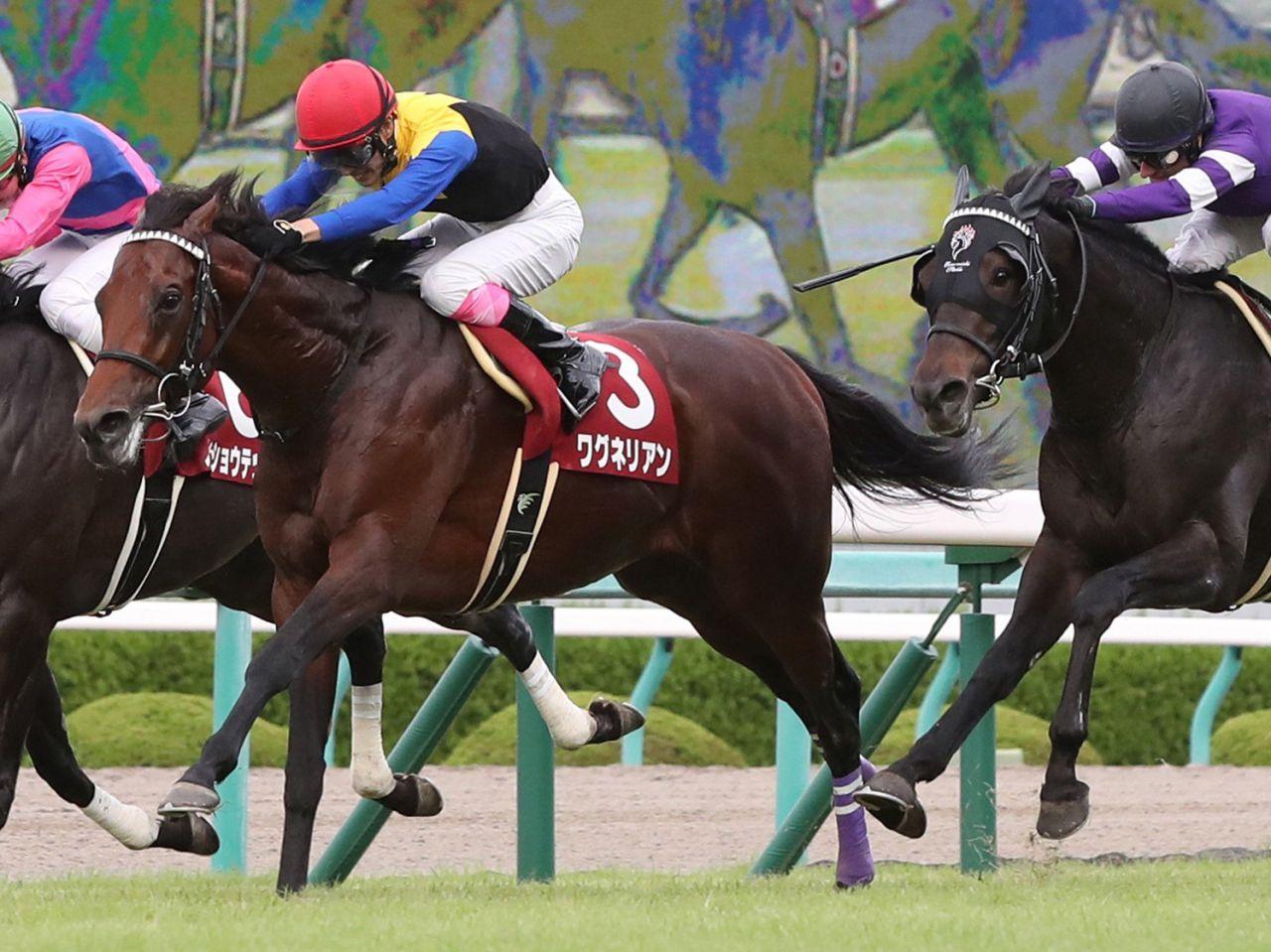 【神戸新聞杯】ワグネリアンが貫禄の差し切り!エポカドーロは4着敗退