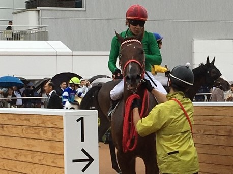 【中山新馬戦】オトナノジジョウが逃げ切り勝ち!三浦「フットワークも良かった」
