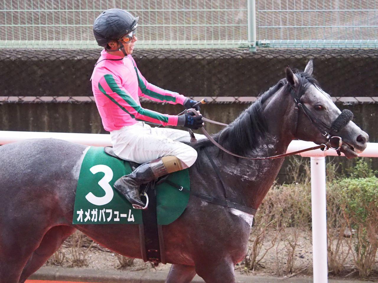 【シリウスS】和田竜「展開も上手くいきました」オメガパフューム重賞初制覇