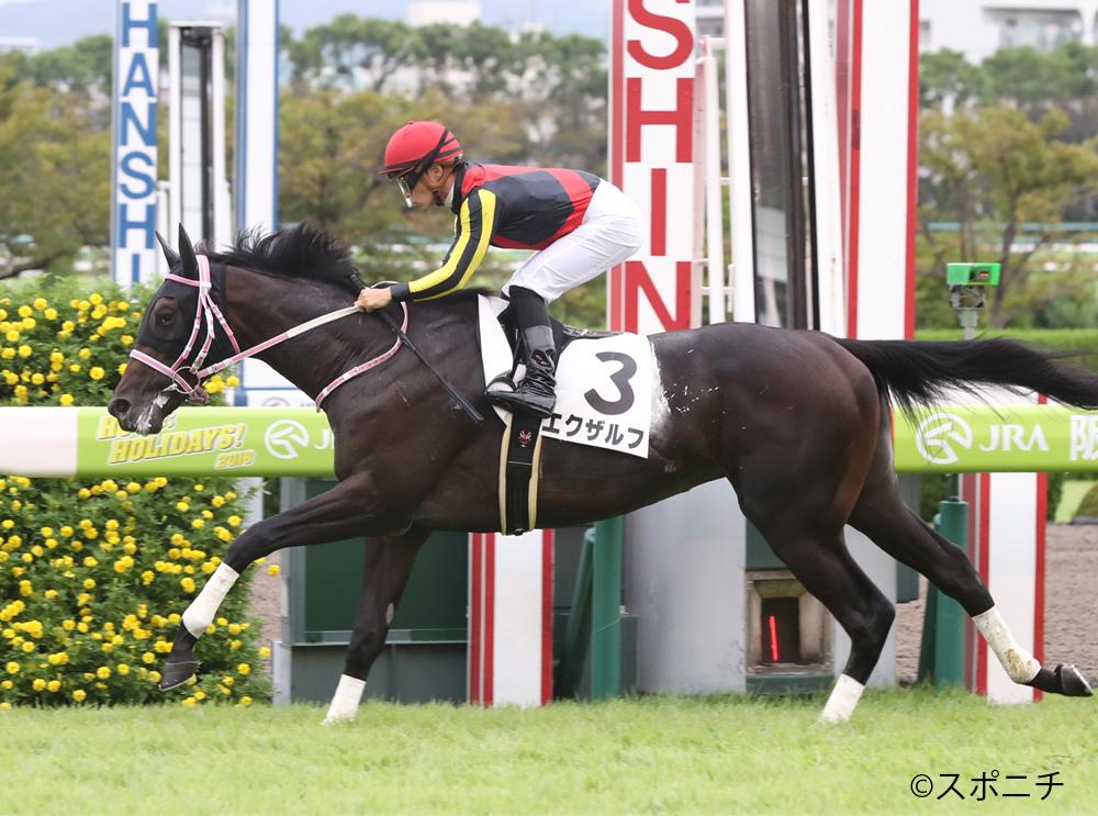 【阪神5R/2歳新馬】リリーノーブルの半弟 エクザルフが逃げ切り!