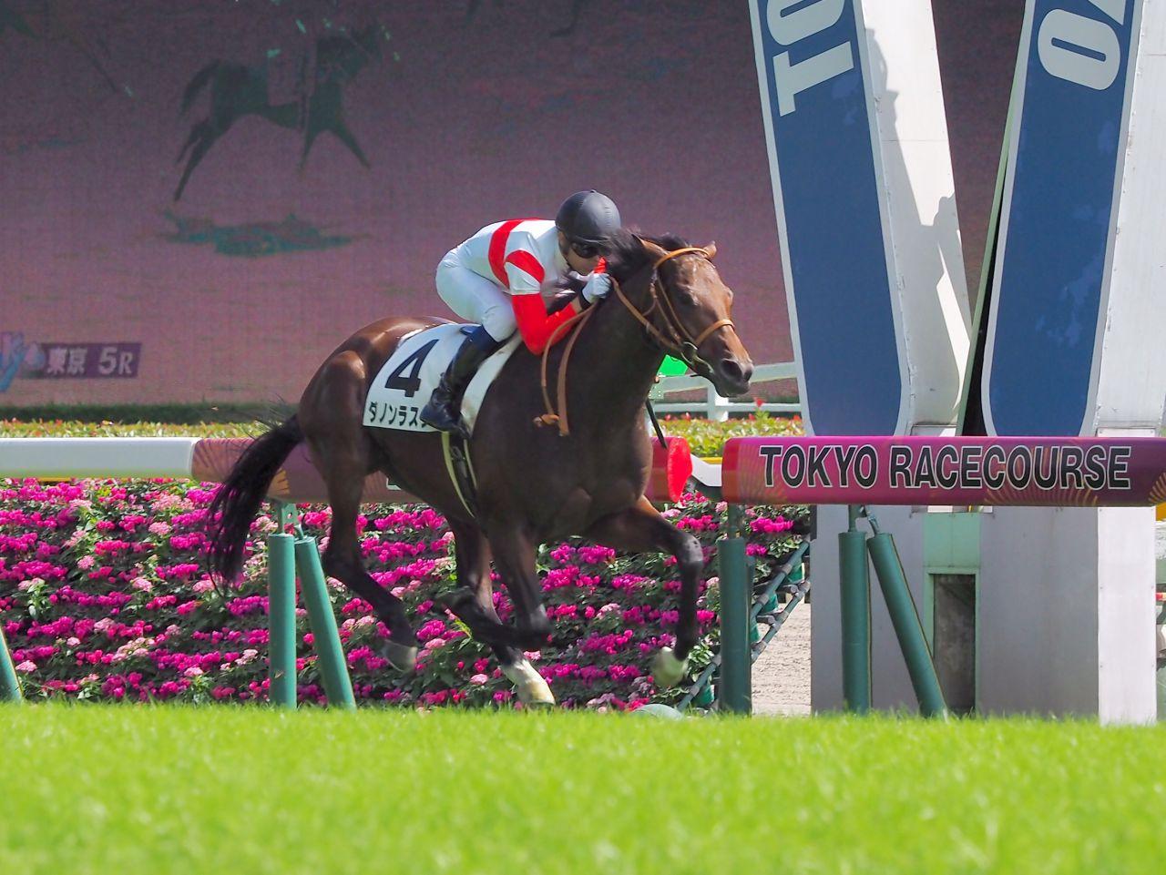 【東京5R/2歳新馬】ダノンラスターが快勝!たけし命名キタノインパクトは4着