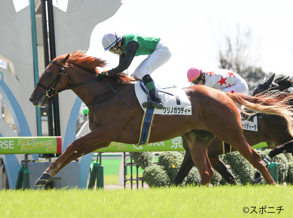 【京都5R/2歳新馬】クリノガウディーがゴール前差し切り!母ブエナビスタのタンタラスは9着大敗