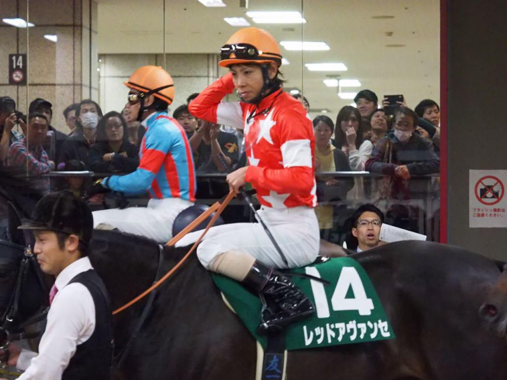 【富士S】レッドアヴァンセが見せ場十分の3着!強豪牡馬と互角に渡り合う