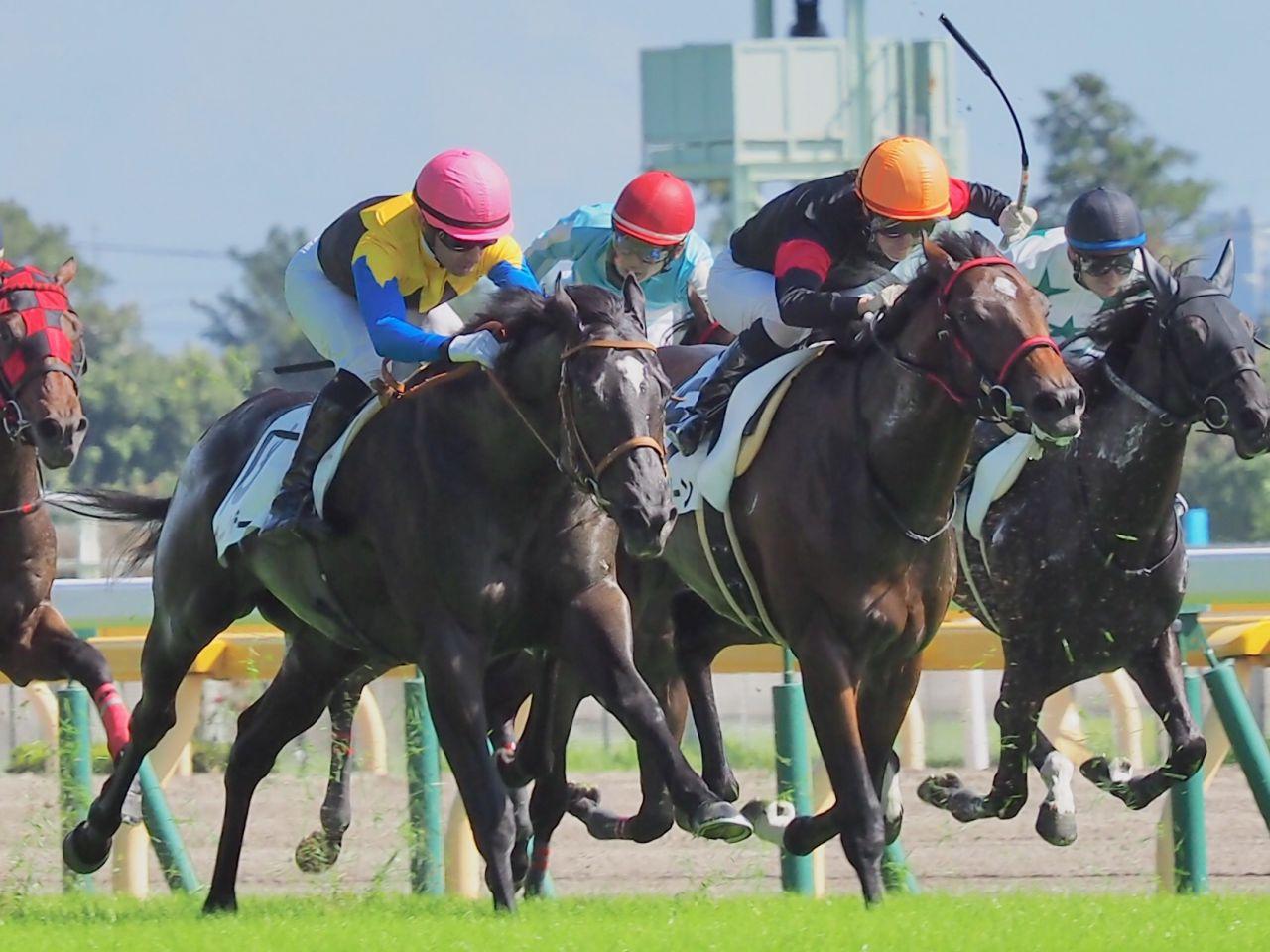 【東京5R/2歳新馬】ブーザー差し切り!モレイラ、菜七子の激しい叩き合い