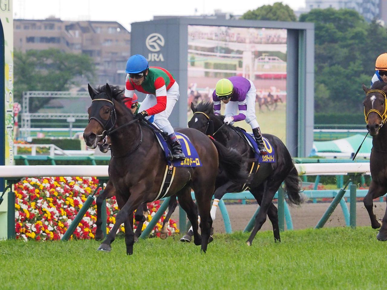 【菊花賞】登録馬と見どころ 皐月賞馬エポカドーロが中心