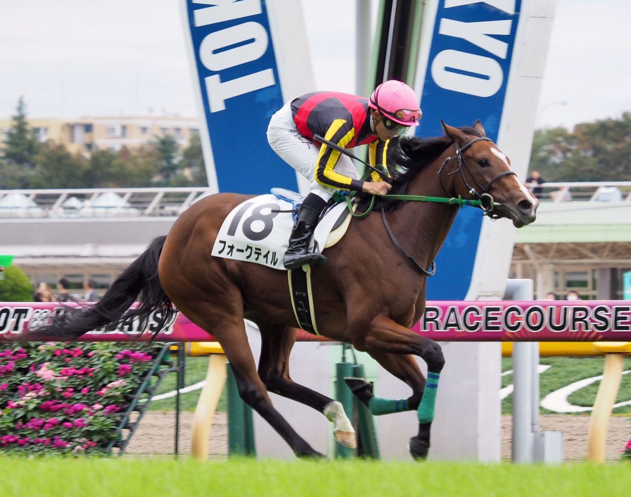 【東京3R/2歳新馬】ロードカナロア産駒 フォークテイルがデビューV!