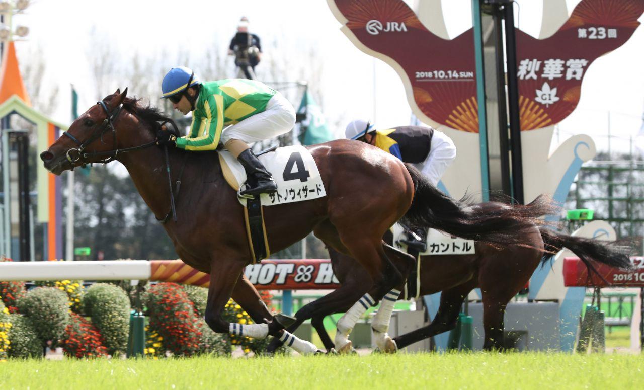 【京都5R/2歳新馬】ロードカナロア産駒 サトノウィザードが圧倒的人気カントルを差し切る