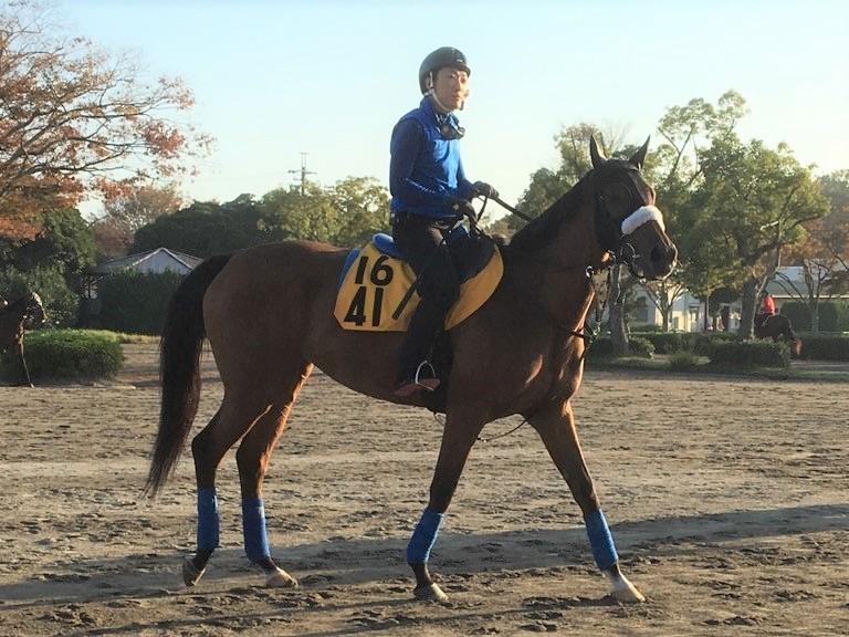 【府中牝馬S】フロンテアクイーン 相手なりに走る安定感
