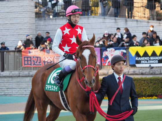 【PHOTO】東京ホースレーシング