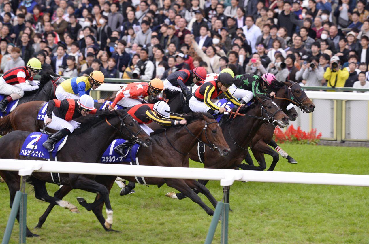 【西内荘コラム】ジャパンカップの担当馬はサウンズオブアース