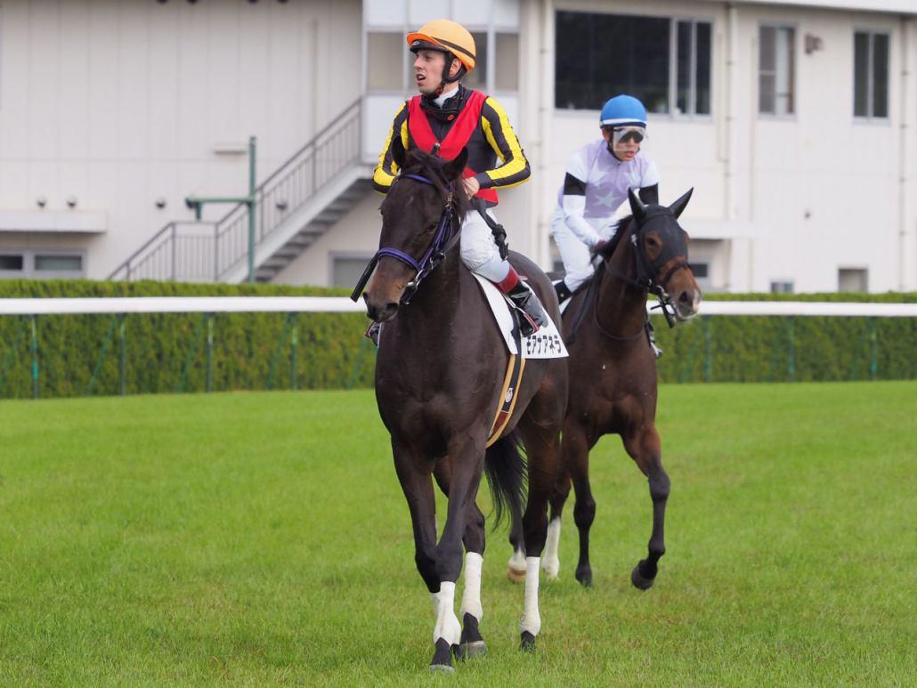 【京都4R/2歳新馬】サヴォワールエメがデビューV!ジェンティルドンナの仔は4着まで