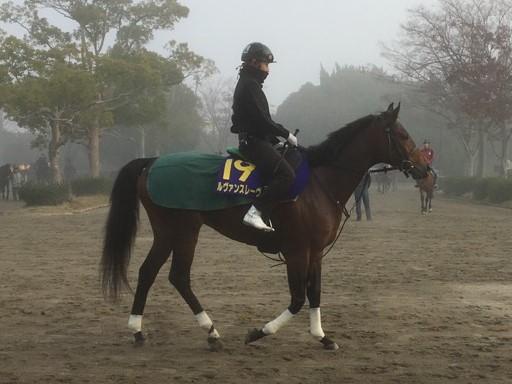 【チャンピオンズC】ルヴァンスレーヴ  3歳馬ながら主役を務める
