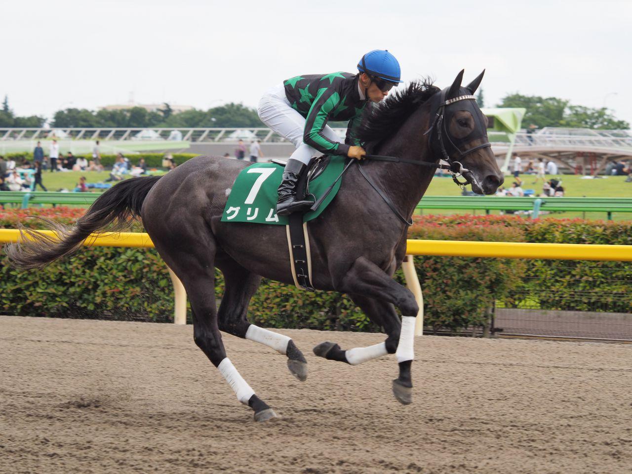 土曜東京5R新馬はクイーンズリングの半妹アクアミラビリスがV