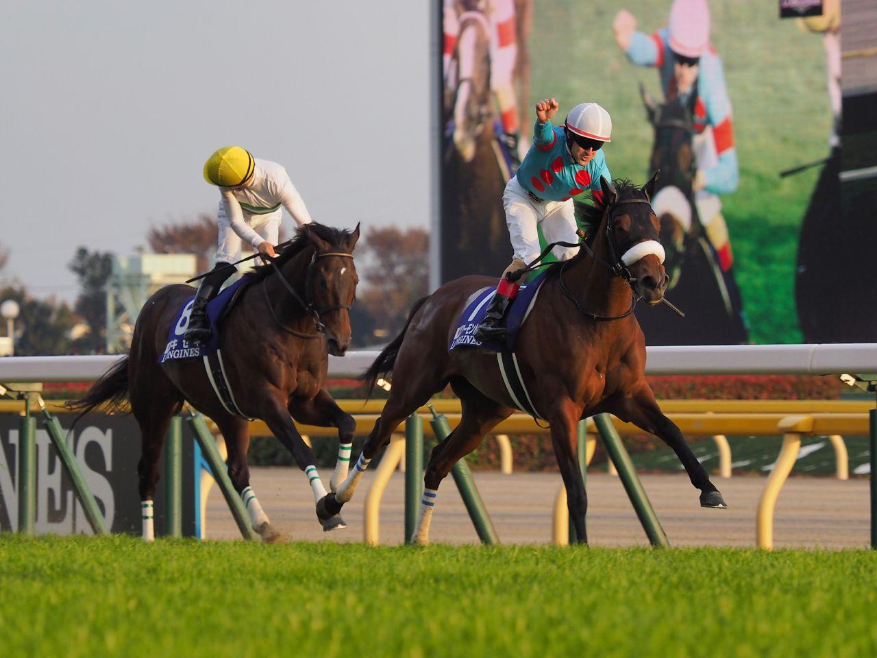【宝塚記念】外国馬の出走なし