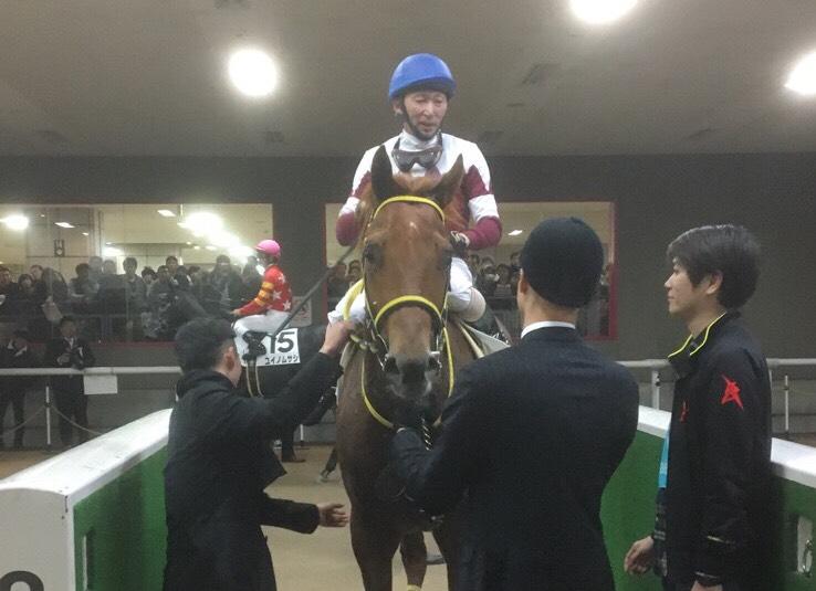 土曜東京9R・カトレア賞はメイクハッピーが新馬戦に続き2連勝