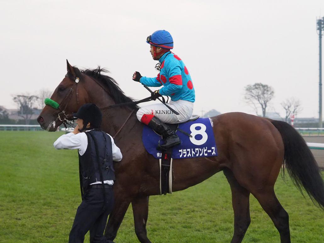 【有馬記念】川田「馬に敬意を表したい」レース後 ジョッキーコメント