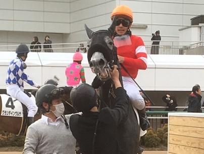日曜中山5R新馬はジャパンスウェプトが1番人気にこたえる
