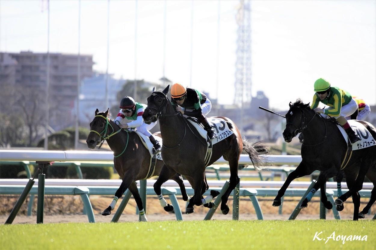 【中山5R/新馬】アイスブラストがデビュー戦を快勝