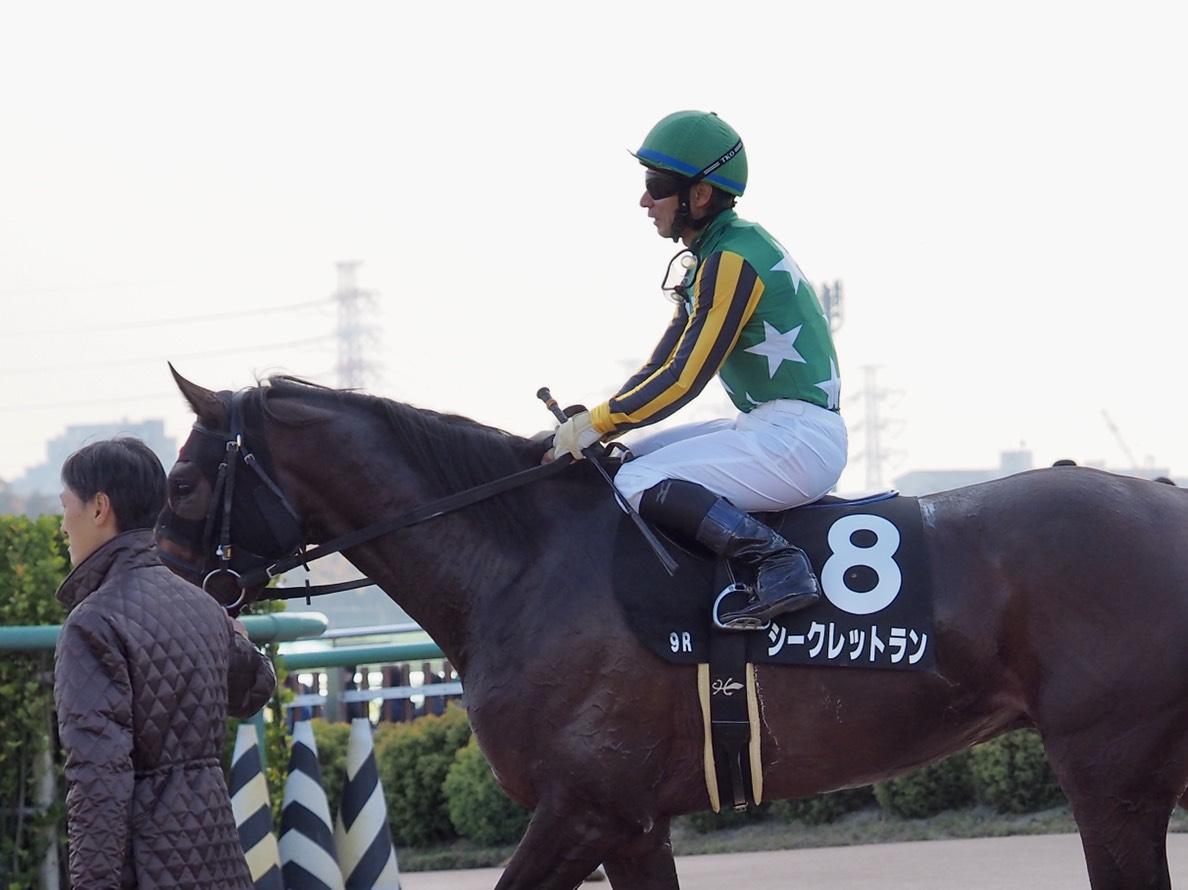 【ステイヤーズS】田辺「ワンペースな部分が…」レース後ジョッキーコメント