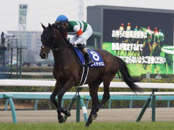 【PHOTO】有馬記念