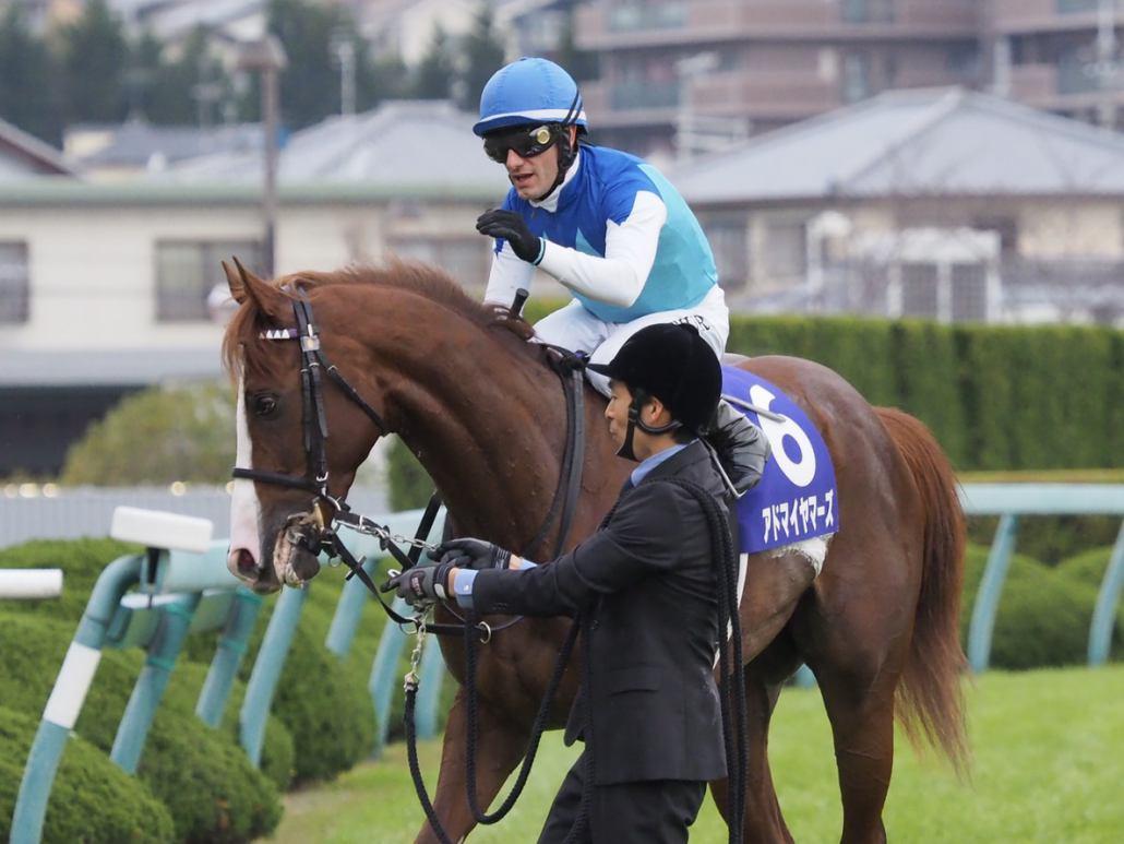 【朝日杯FS】武豊「内枠の方がいい展開…」レース後 ジョッキーコメント