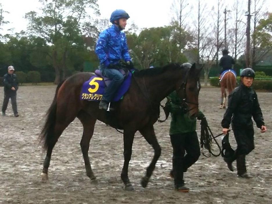 【朝日杯FS】グランアレグリア 38年ぶり牝馬Vの快挙なるか