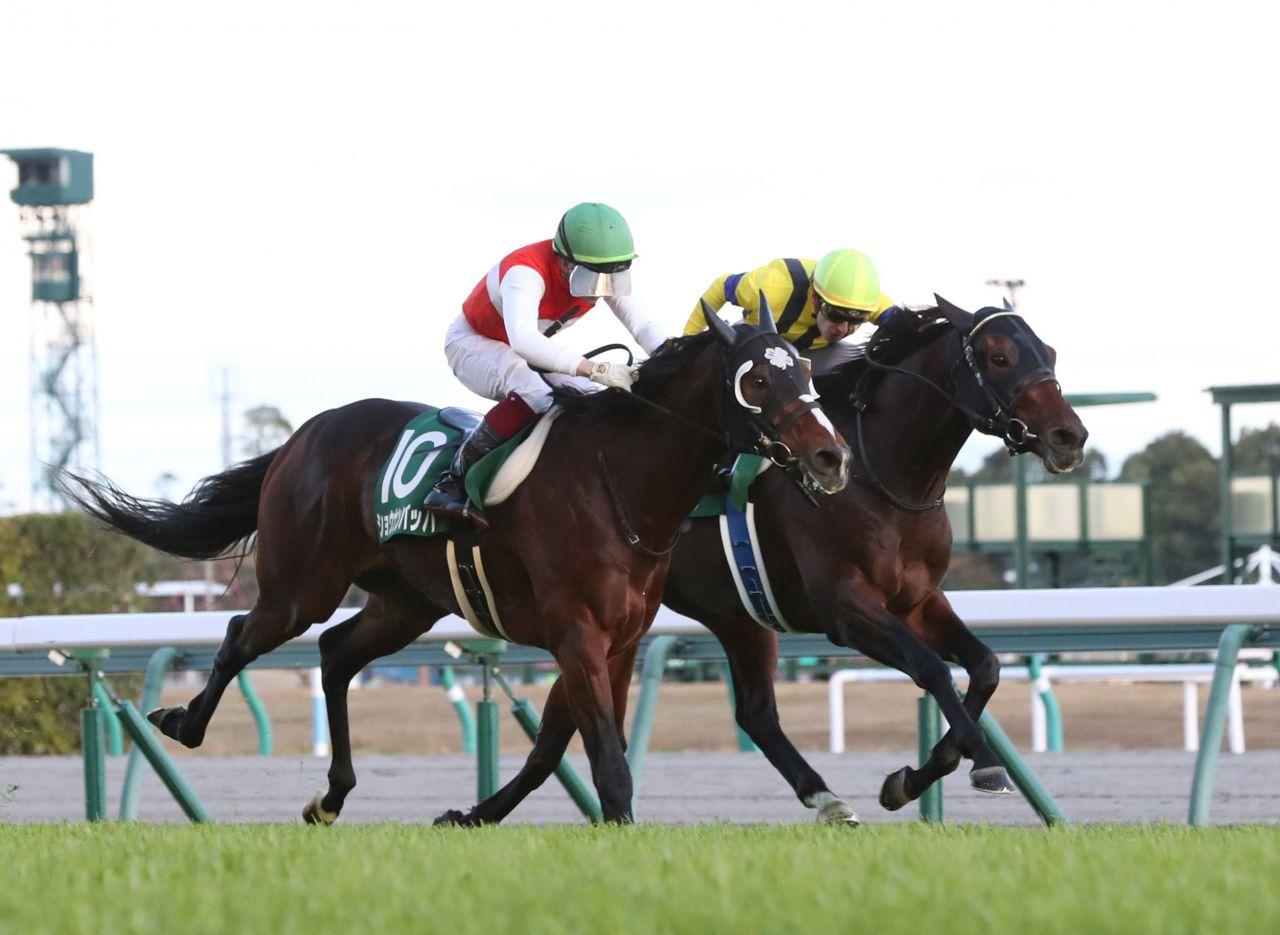 【中日新聞杯】3歳馬ギベオンがハナ差の大接戦を制して重賞初制覇